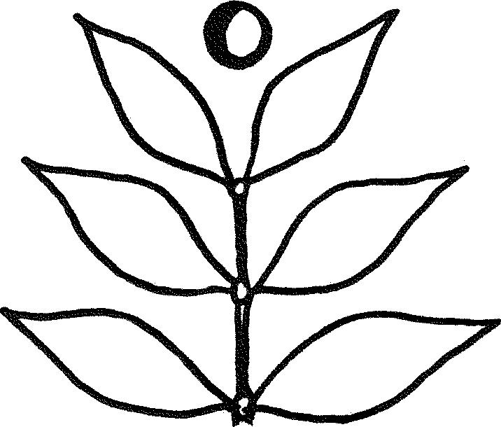 Camu-leaf